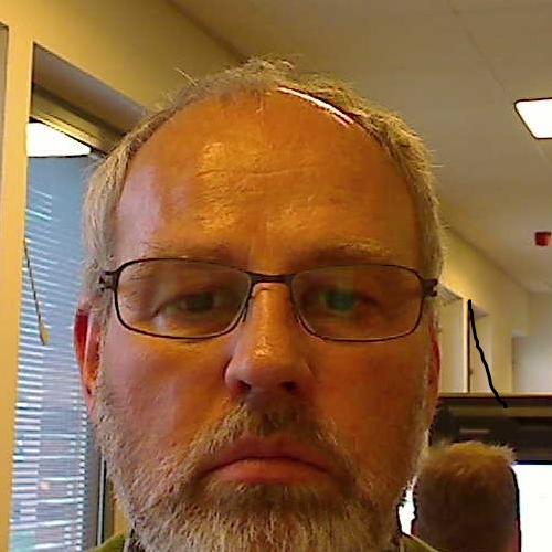 Flemming Ortvald