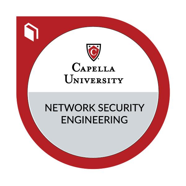Network Security Engineering