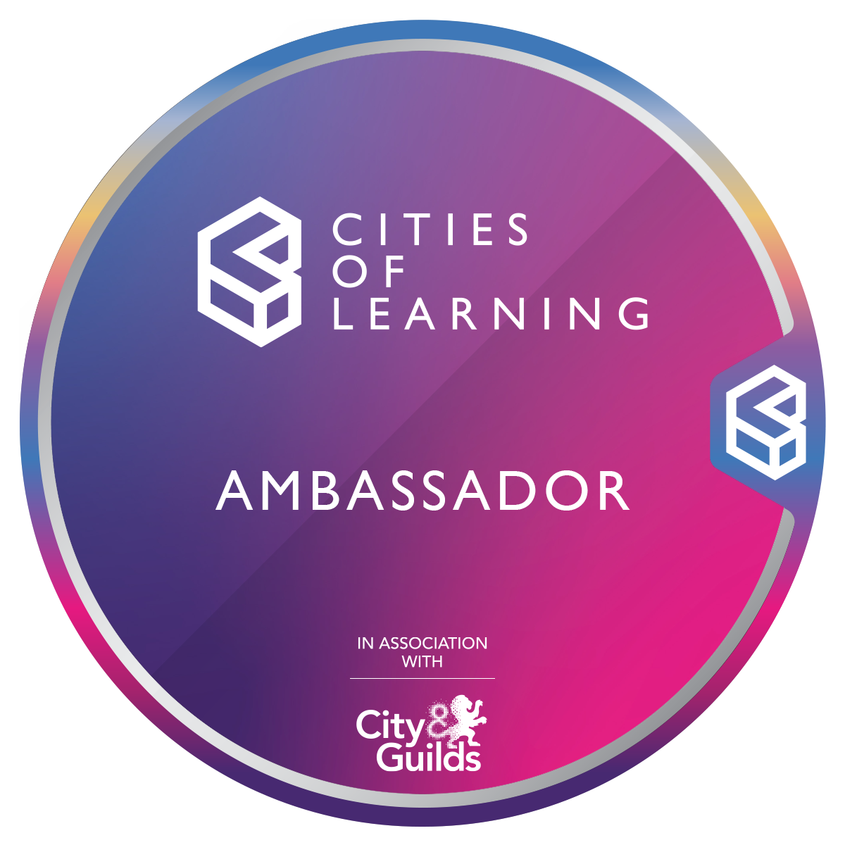 Cities of Learning Programme Ambassador