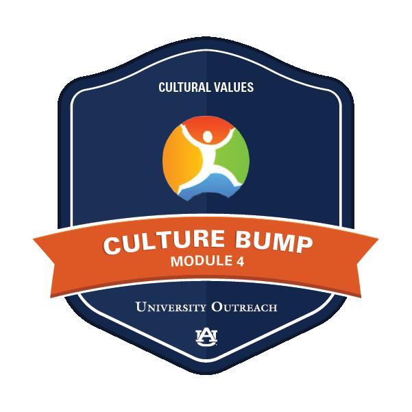 Culture Bump Module 4: Cultural Values