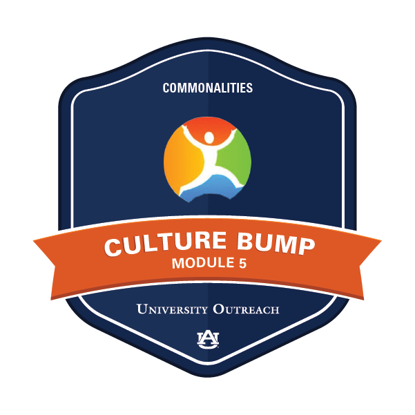 Culture Bump Module 5: Commonalities