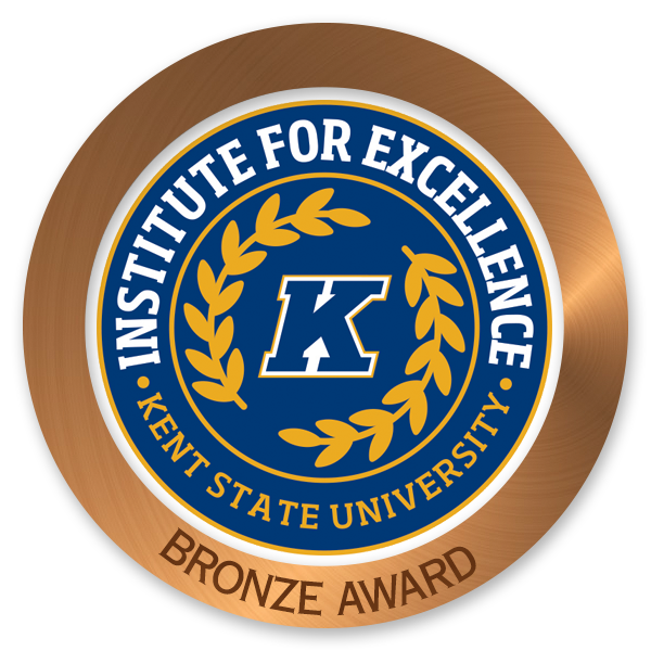 Institute for Excellence Bronze Award