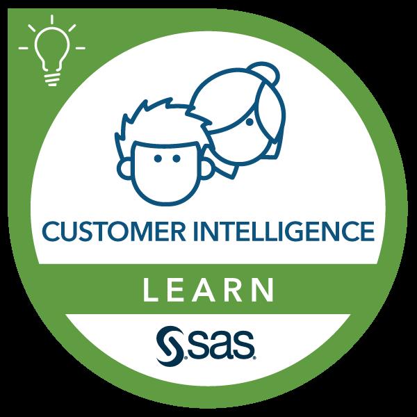 Essential Functions of SAS Intelligent Decisioning