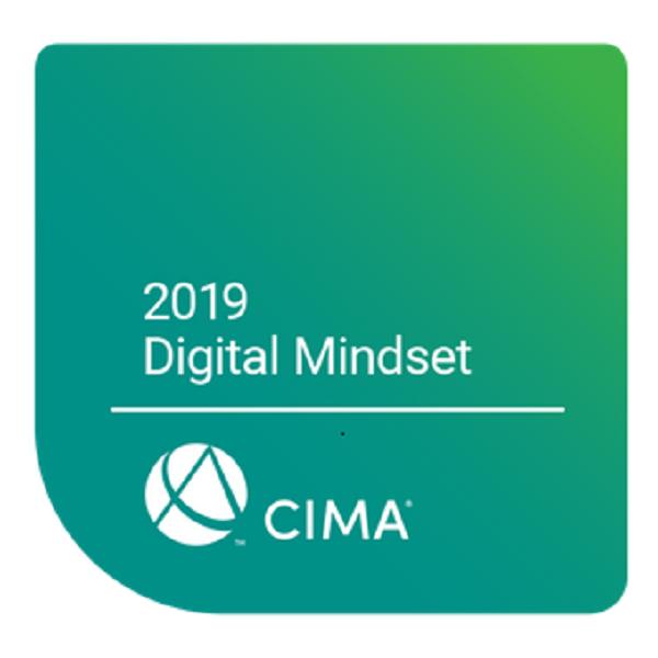 2019 Digital Mindset