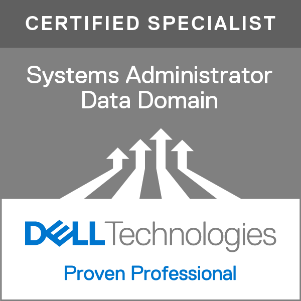 Systems Administrator, Data Domain Version 2