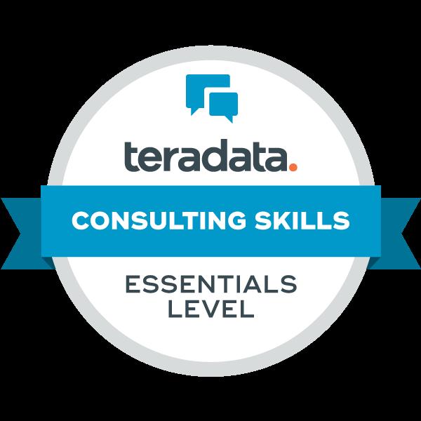 Consulting Skills - Essentials Level