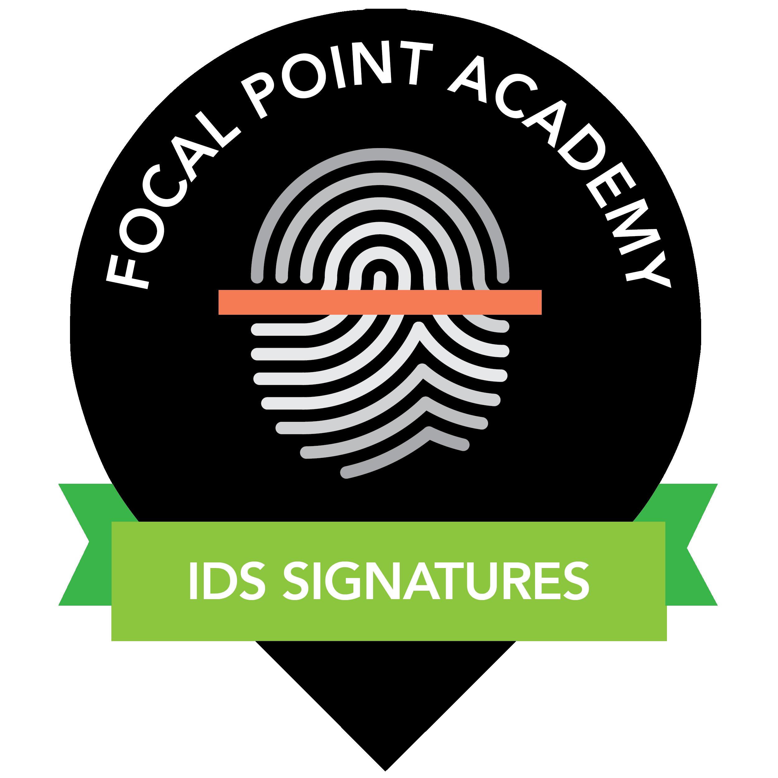 IDS Signature Creation and Optimization