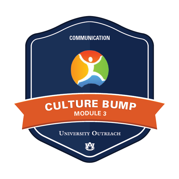 Culture Bump Module 3: Communication