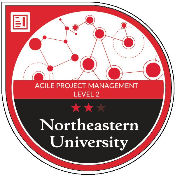 Agile Project Management Level 2