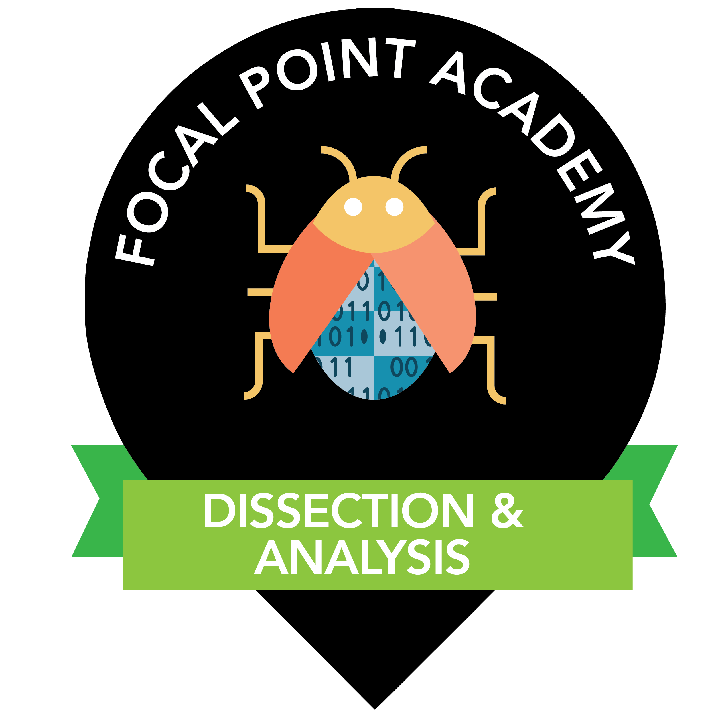 Dissection and Analysis of Network Traffic