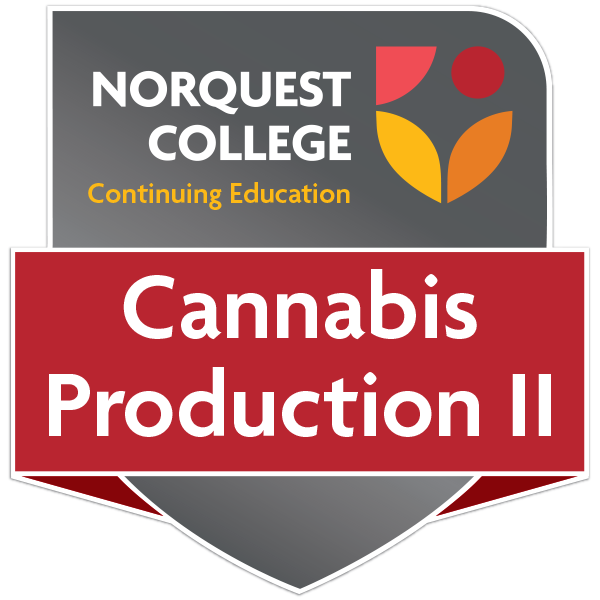 Cannabis Trimming & Production: on-site training