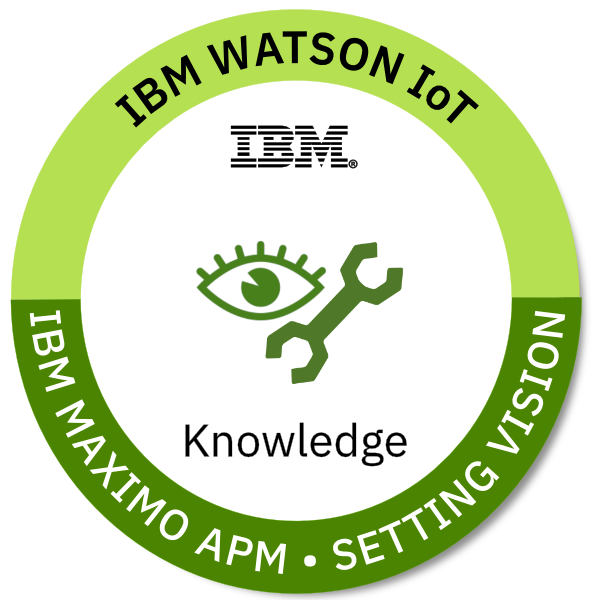 IoT - IBM Maximo Asset Performance Management - Setting vision