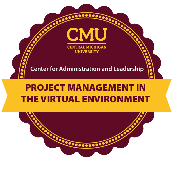 Project Management in the Virtual Environment