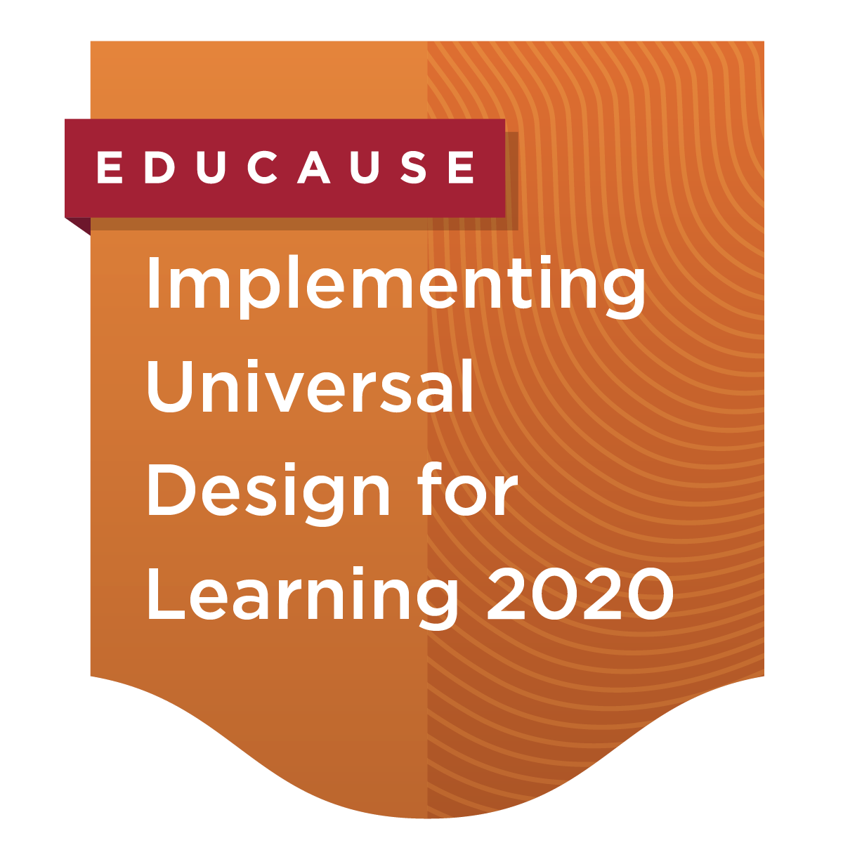 Implementing Universal Design for Learning in Higher Education 2020