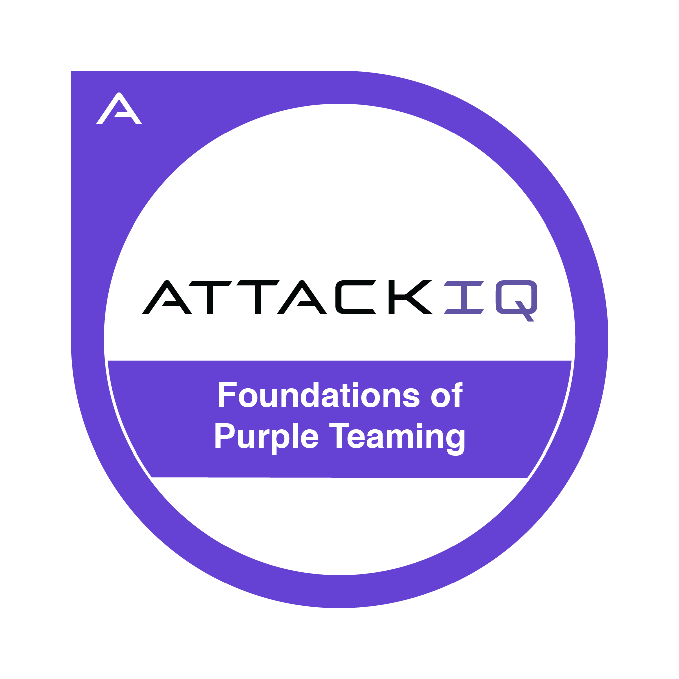 Foundations of Purple Teaming
