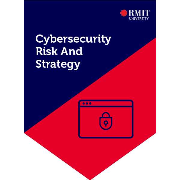 Cybersecurity Risk and Strategy