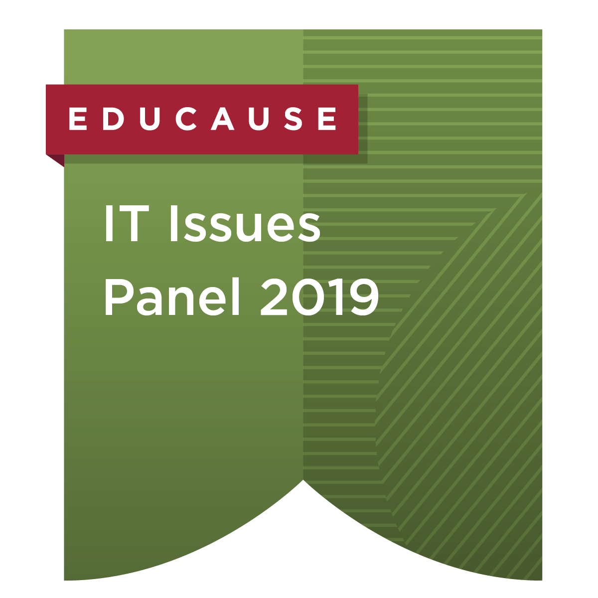 IT Issues Panel 2019