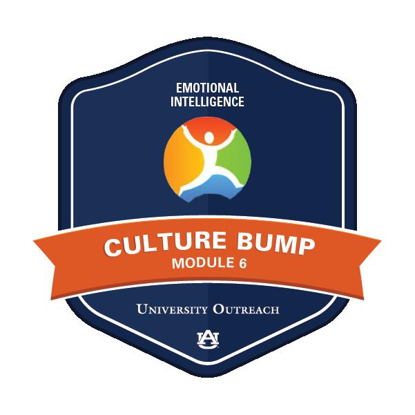 Culture Bump Module 6: Emotional Intelligence