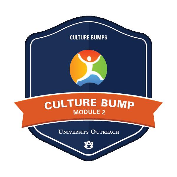Culture Bump Module 2: Culture Bumps