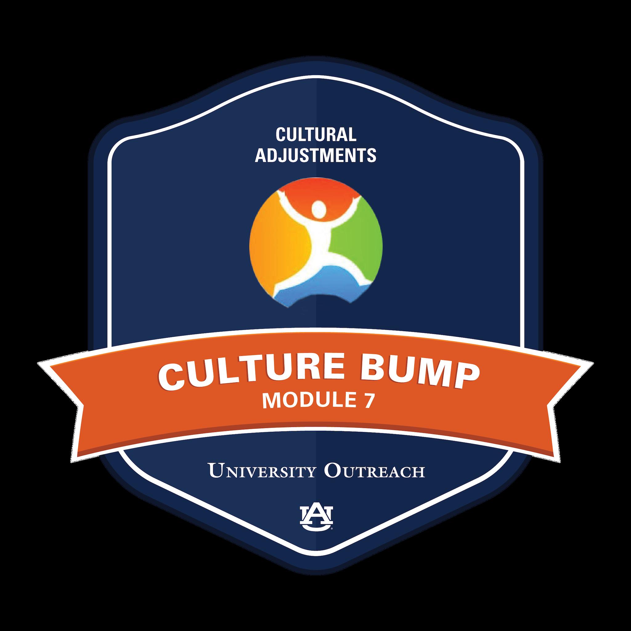 Culture Bump Module 7: Cultural Adjustment