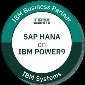 IBM Systems Business Partner SAP HANA on IBM POWER9